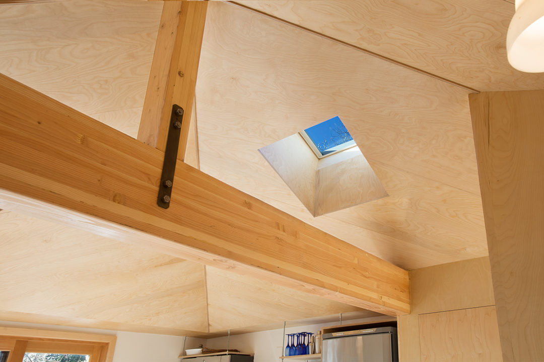 DADU ceiling with skylight